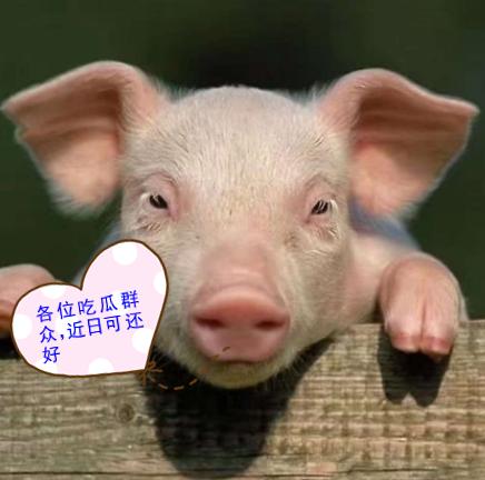 河南北万博manbetx官网主页
