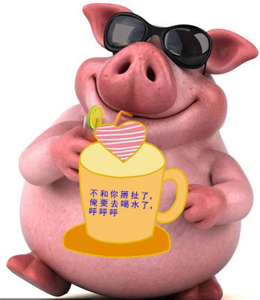 乳猪教槽料