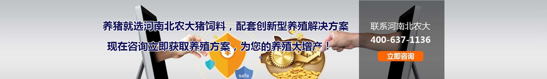 河南博猫平台注册网址哺乳料
